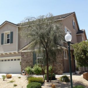 Highly Upgraded Home with Pool in Seven Hills, Las Vegas Housing Experts, Michael Parks