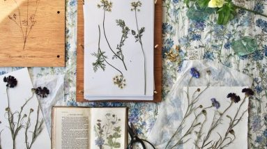 How to press flowers with JamJar and Thyme | House & Garden
